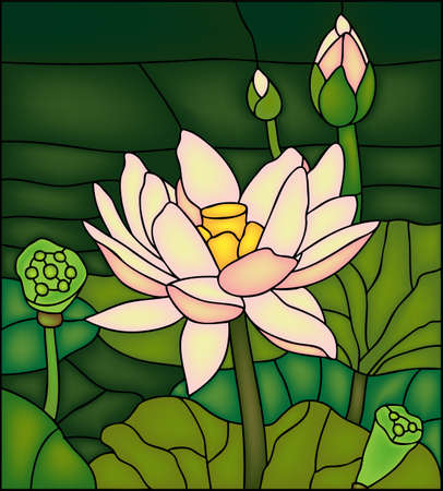 Lily in the pond, stained glass winow