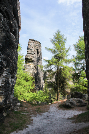 Rock mountain in Tisa with trees. Czech landscape