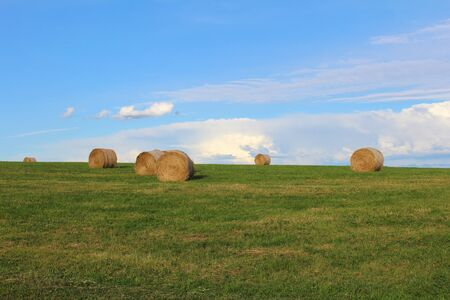 Straw bale on green meadow with blue sky