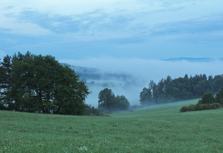 budejovice: Meadow in morning fog with trees, Czech landscape Stock Photo
