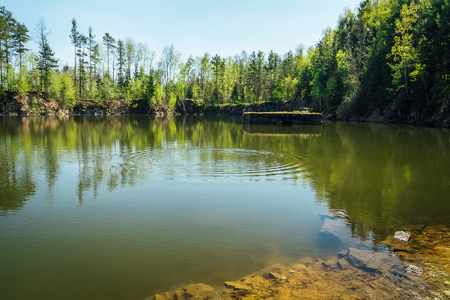 Small swamped quarry with water, trees and blue sky, Czech republic