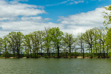 Nice spring trees on pond dam, Czech landscape 免版税图像