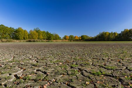 Dry pond cracked earth with autumn foliage leave and blue sky. Global climate less water problem 스톡 콘텐츠