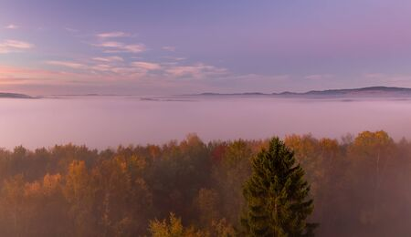 Aerial view to autumn misty fog with trees and hill in sunrise, Czech landscape Reklamní fotografie