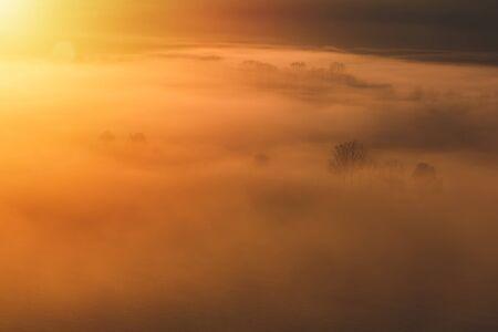 Aerial view to autumn trees in misty orange fog, Czech landscape Reklamní fotografie