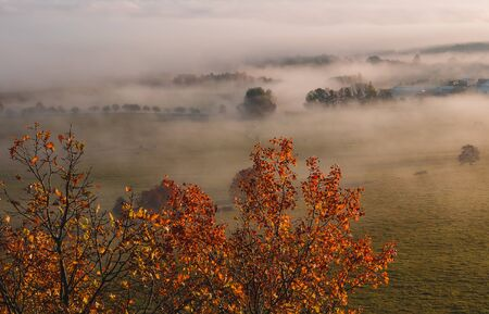 Aerial view to colorful autumn foliage trees with misty fog on meadow, Czech landscape, colored photo Reklamní fotografie