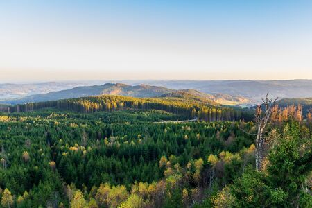 Aerial view to autumn forest from lookout Nebelstein on sunset, Austria landscape