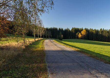 Old road with autumn trees, Czech republic