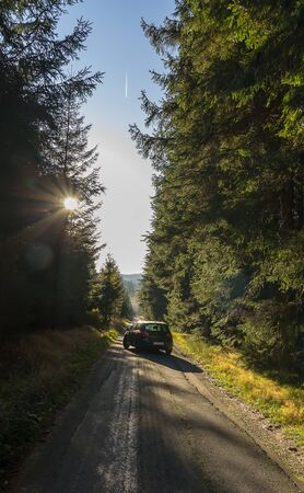 Black car on asphalt road in forest from back with blue sky Archivio Fotografico - 133517039