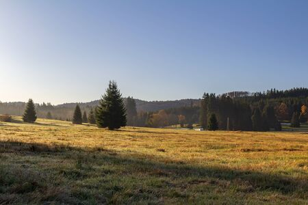 Nice autumn meadow with trees and rime in Novohradske mountain, Czech republic