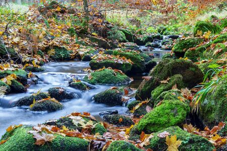 Nice small forest brook, stream with colorful autumn leaves and stone, long exposure, Czech landscape Reklamní fotografie