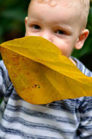 Boy with yellow leaf