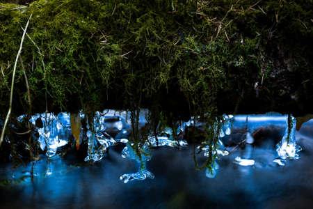 ice on a log closeup photo