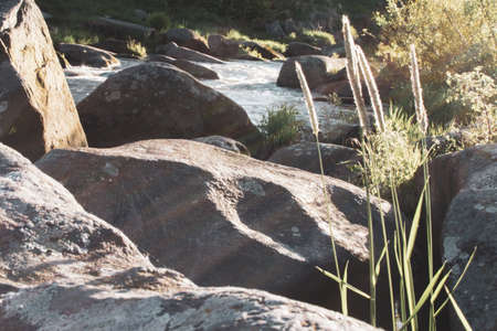 Spring river vltava