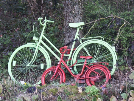 Big and small colorful bicycle stand on a tree Standard-Bild