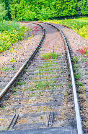 seemed: View on railroad tracks, track with a colorful plantings