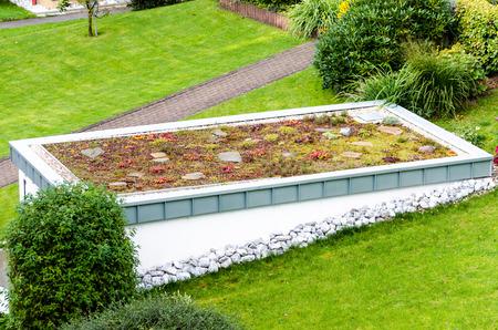 Roof garden, green roof of a garage. Standard-Bild