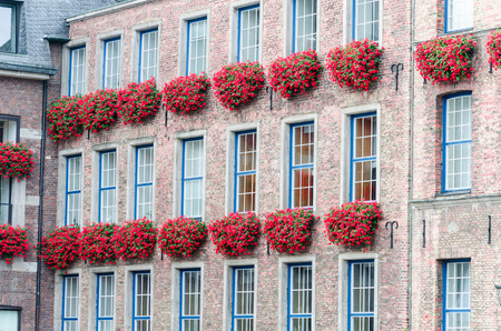 flower boxes: Old historic facade of the town hall and with flower boxes on Jan Wellem monument. Shot in Germany