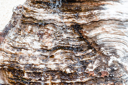 p buildings: Water flows over a rock or stone. Stock Photo