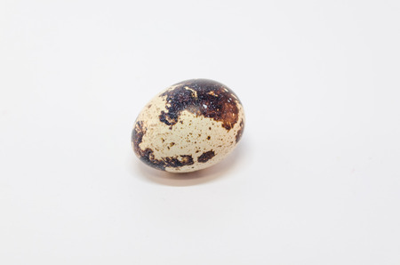 exempted: Quail egg exempted against white background.