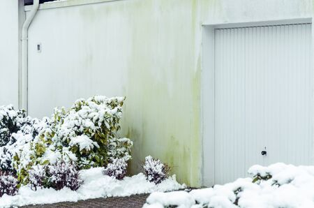 caused: Algae on house wall by caused  insulation Stock Photo
