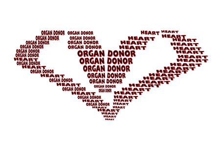 donacion de organos: Concepto de donaci�n de �rganos. El texto rojo en forma de coraz�n sobre fondo rojo