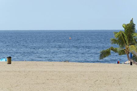 german north sea region: View of a beach in the background the sea and a palm tree. Stock Photo