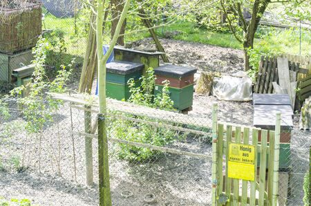 hives: Honey bee hives in the spring in a small garden. Stock Photo