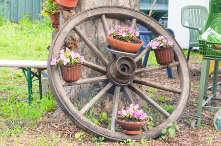 wagon wheel: Old wooden wheel is placed on a tree decorated with flowers