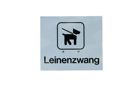 prohibitions: Bid sign dog on leash sign inscription leash against white background.