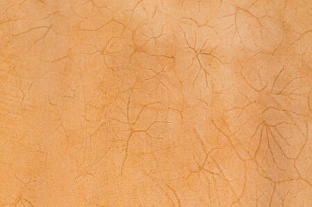 skin art: Natural brown leather. Animal skin Stretched. As a background.