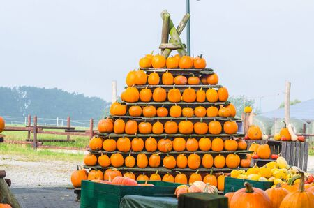 farmers market: At a farmers market. Decorative pumpkins stacked in a pyramid shape. Stock Photo