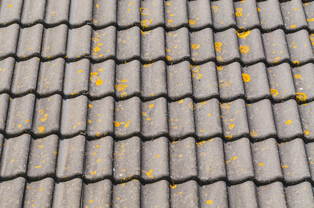 pitched roof: Detail some old house roof with mossy and weathered roof tiles. Stock Photo