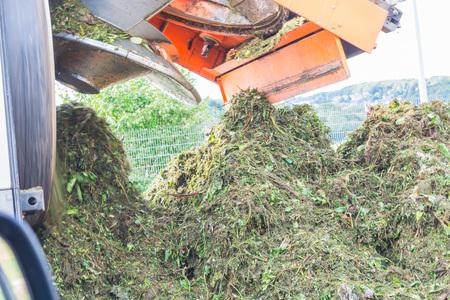 desechos organicos: Cami�n durante la descarga de los residuos biol�gicos en un vertedero de residuos org�nicos. Foto de archivo