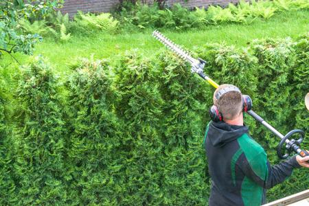 Professionele hagen knippen met benzine telescopische heggenschaar. Stockfoto