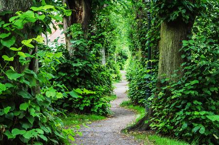 デュッセルドルフ カイザースヴェルトでバルバロッサの壁を通って歩道。