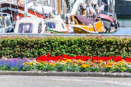 intentional: Colorful colorful flower bed with many different plant species. In the background a harbor. Background blur intentional.