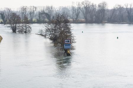 ruhr: Flooded forest land, flood plain in Muelheim an der Ruhr in Germany.
