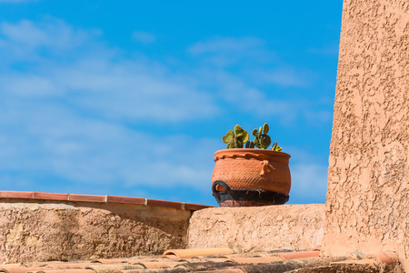 Flowerpot from clay planted with a spiny cactus Stock Photo