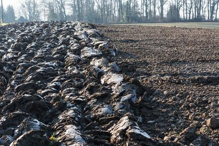 harvests: Freshly plowed field, field in Germany.