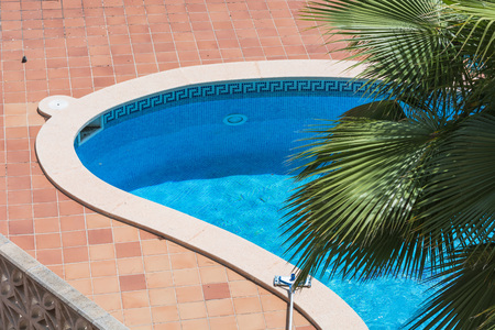 Finest Outdoor Swimming Pool Whirlpool With Blue Tiles And Palm With  Whirlpool Outdoor
