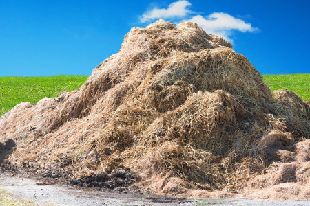 A manure pile on a farm in the background a wall of bricks. Stock Photo