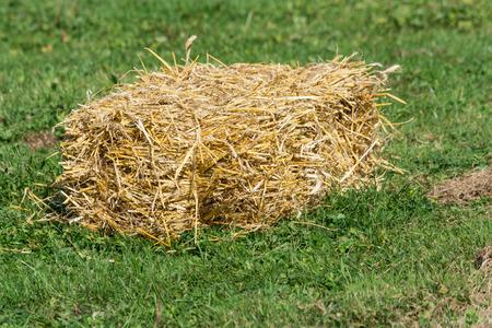 mini farm: A small bales of straw on a green field.