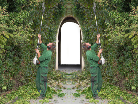 Two men cutting a hedge with a motor hedge trimmer. In the background a passage with archway as Sleeping Beauty Castle Фото со стока - 69644992