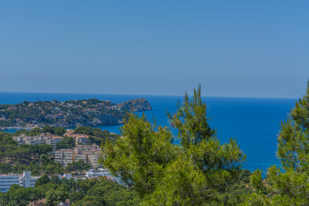 tora: Panorama of the bay Paguera photographed from the mountain in Costa de la Calma.