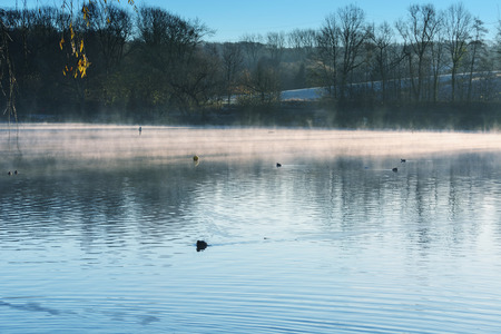 Morning with fog and sun reflection at a small lake in Heiligenhaus, Germany.