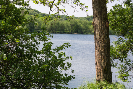 View of the Abtskuecher pond in Heiligenhaus, Germany. Stock Photo