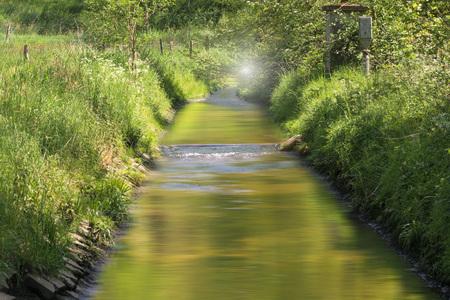 El agua clara fluye a través de un hermoso paisaje ribereño.