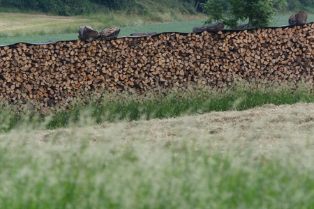 appliances: Beautifully stacked firewood stock for winter on a large meadow in the countryside.