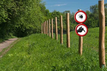 Borreliosis and tick warning. Two round red warning signs on a fence post in front of a green meadow. A sign with ticks symbol the other shows a hand with syringe. Stock Photo